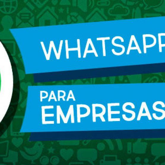 WhatsApp para Empresas: WhatsApp Business